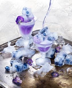 Sweden, Studio shot of fresh frozen dessert with blueberriesの写真素材 [FYI02208336]