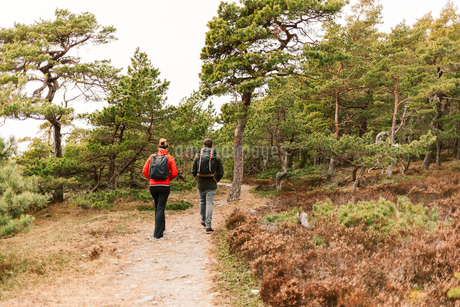 Rear view of couple hiking in Sodermanland, Swedenの写真素材 [FYI02208346]