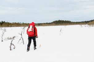 Sweden, Vastmanland, Bergslagen, Kindla Naturreservat, Mature man skiing through plain with forest oの写真素材 [FYI02208374]