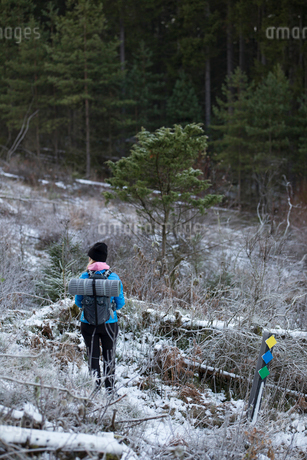 Rear view of woman hiking through forest in Lerum, Swedenの写真素材 [FYI02208379]