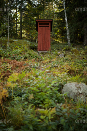 Toilet in forest in Smaland, Swedenの写真素材 [FYI02208508]