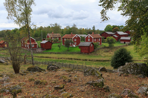 Red rural houses in Stensjo by, Swedenの写真素材 [FYI02208556]