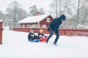 Man pulling children on sledの写真素材 [FYI02208557]