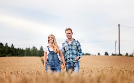 Finland, Uusimaa, Siuntio, Mid adult couple walking in wheat fieldの写真素材 [FYI02208566]