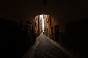A cobblestone tunnel in Swedenの写真素材 [FYI02208587]