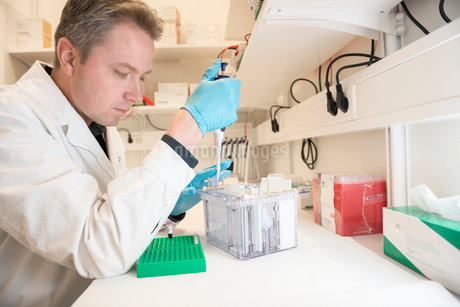 Man working in lab in Swedenの写真素材 [FYI02208640]