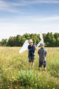 Sweden, Gotland, Boys (6-7, 8-9) with butterfly nets in meadow with forest on horizonの写真素材 [FYI02208689]