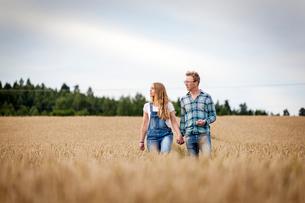 Finland, Uusimaa, Siuntio, Mid adult couple walking in wheat fieldの写真素材 [FYI02208706]