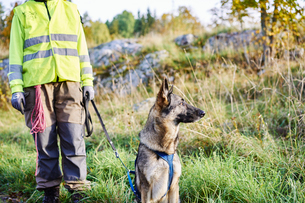 Sweden, Uppland, Rison, Volunteer with dog helping emergency services find missing peopleの写真素材 [FYI02208734]