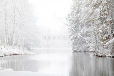 River and snow covered forest in Lotorp, Swedenの写真素材 [FYI02208742]