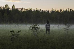 Rear view of woman on foggy field in Selet, Swedenの写真素材 [FYI02208812]