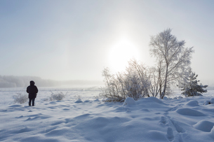 A person standing in the snowの写真素材 [FYI02208820]