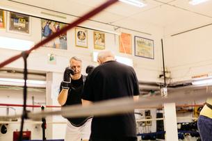 Senior men boxingの写真素材 [FYI02208821]