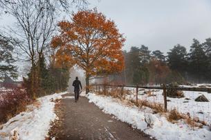 A man walking on a snowy trailの写真素材 [FYI02208831]