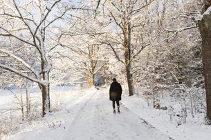 Rear view of woman walking in snow in Jarfalla, Swedenの写真素材 [FYI02208837]