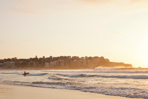 Person going for a surf at Bondi Beach at sunriseの写真素材 [FYI02208967]