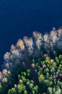 Aerial view of forest in Sundbro, Swedenの写真素材 [FYI02209058]