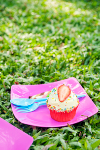 Strawberry cupcake at birthday picnicの写真素材 [FYI02209060]