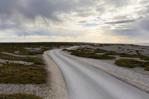 Rural road in Digerhuvud, Swedenの写真素材 [FYI02209064]