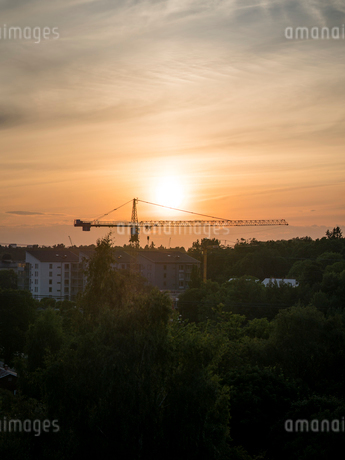 Crane at sunset in Akeshov, Swedenの写真素材 [FYI02209084]