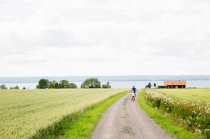 Family cycling along rural road in Smaland, Swedenの写真素材 [FYI02209103]