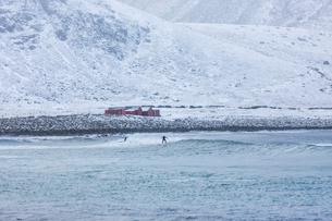 People surfing in the sea below snowy hills in Norwayの写真素材 [FYI02209143]