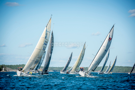 Sweden, Sailboats sailing on sunny dayの写真素材 [FYI02209182]
