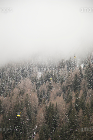 Fog above trees in La Thulie, Italyの写真素材 [FYI02209193]