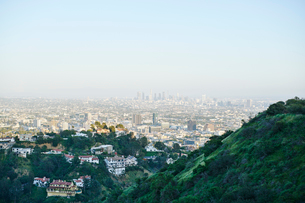 Houses in hills in Hollywood, USAの写真素材 [FYI02209263]
