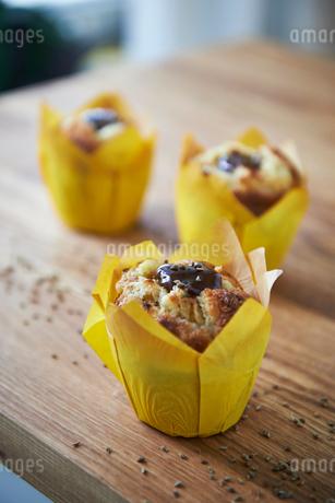 Chocolate muffinの写真素材 [FYI02209322]