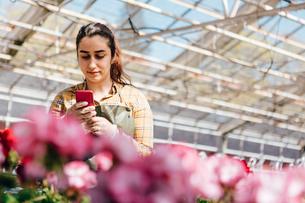 Garden centre worker on smart phoneの写真素材 [FYI02209344]