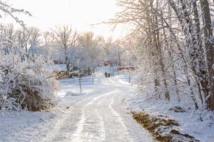 Rural road covered in snow in Jarfalla, Swedenの写真素材 [FYI02209347]