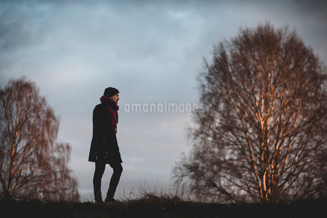 Man on hill in Sodermanland, Swedenの写真素材 [FYI02209370]