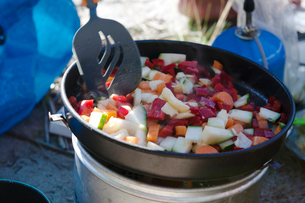 Vegetables in pot on camp stoveの写真素材 [FYI02209472]