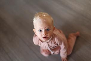 Baby girl looking upの写真素材 [FYI02209528]