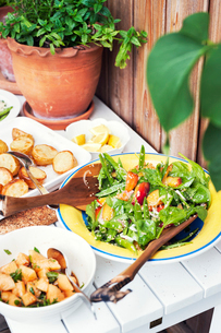 Salad and potatoes on a table outdoorsの写真素材 [FYI02209579]