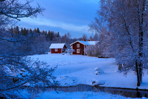 House by bare trees during winter in Stocka, Swedenの写真素材 [FYI02209589]