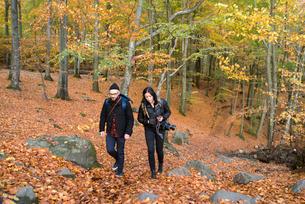 Sweden, Skane, Soderasen, Man and woman walking in forest during autumnの写真素材 [FYI02209662]
