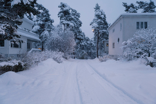 Road by houses during winter in Bromma, Swedenの写真素材 [FYI02209814]