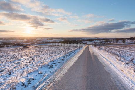 Rural road during winter in Skane, Swedenの写真素材 [FYI02209840]