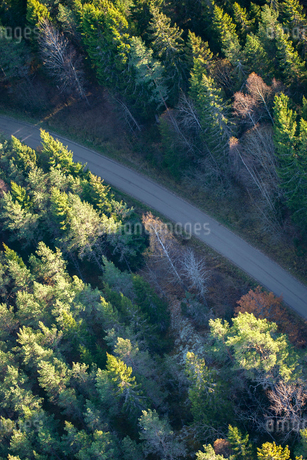 High angle view of rural road in Karby, Swedenの写真素材 [FYI02209937]