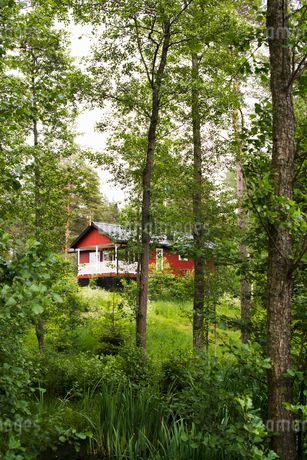 A rural house surrounded with trees in Swedenの写真素材 [FYI02210070]