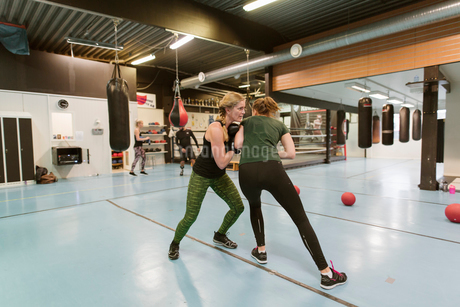 Two women sparring in a boxing classの写真素材 [FYI02210122]