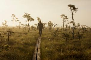 Sweden, Smaland, Man walking through Store Mosse National Parkの写真素材 [FYI02210240]