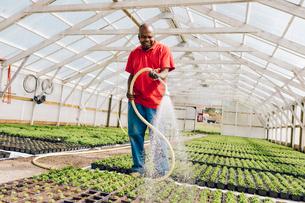 Garden centre worker watering gardenの写真素材 [FYI02210281]