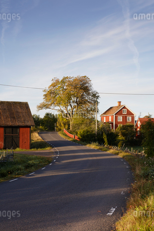 Houses along rural road in Krokshult, Swedenの写真素材 [FYI02210333]