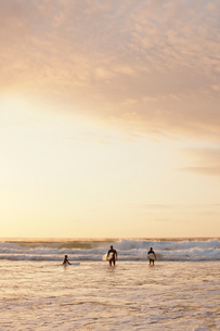 Three people going for a surf at Bondi Beach at sunriseの写真素材 [FYI02210392]