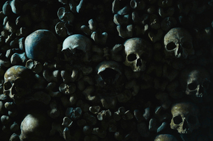 Human skulls in catacomb in Paris, Franceの写真素材 [FYI02210414]