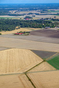 Agriculture fields in Uggelsta, Swedenの写真素材 [FYI02210509]