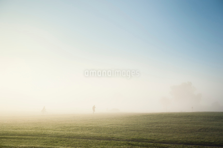 Fog over field in Gardet, Swedenの写真素材 [FYI02210512]